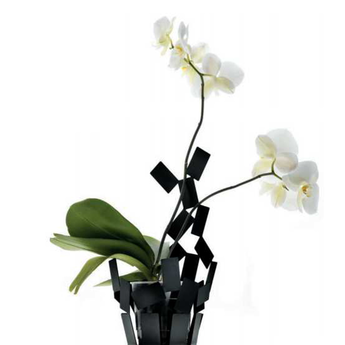 Vaza MT08 B crna