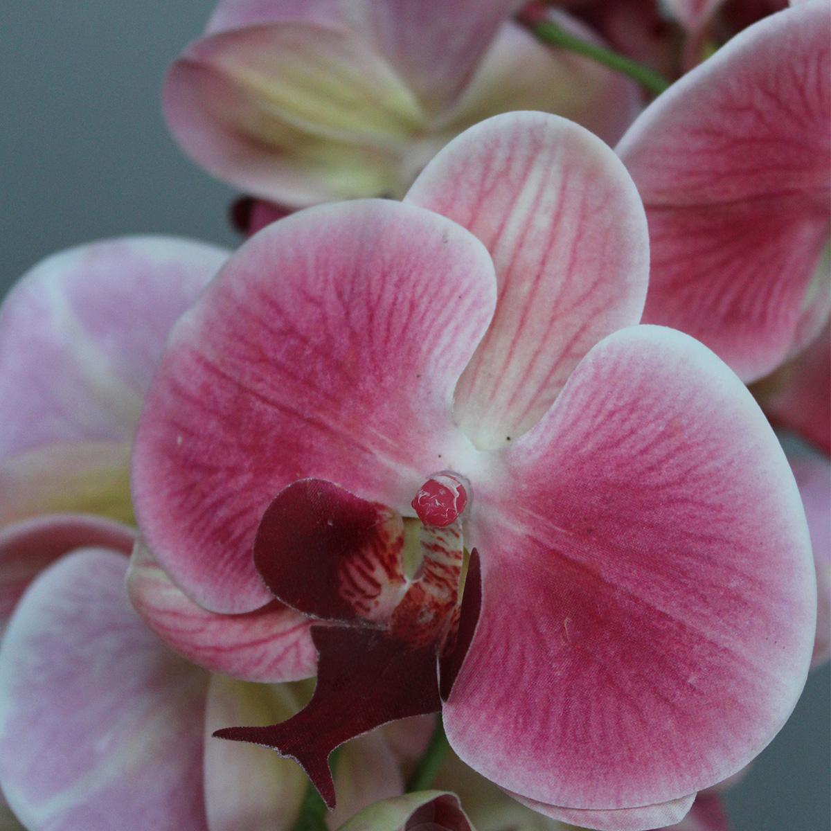 Dekorativna orhideja u posudi MUS-225